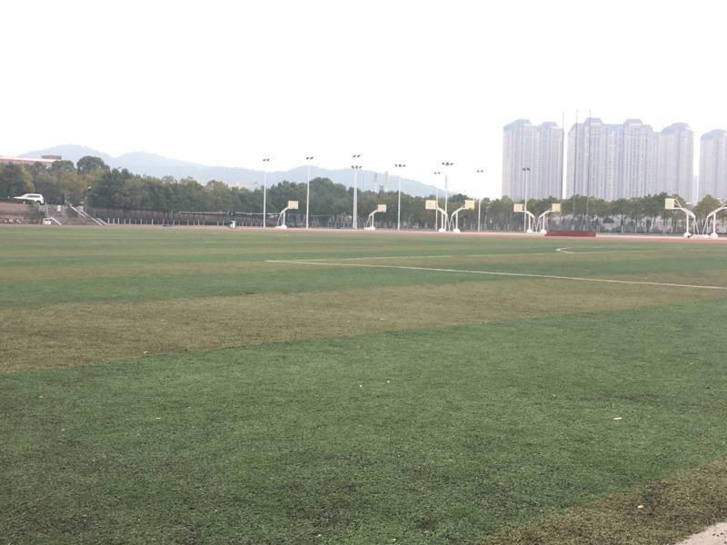 建桥教育足球训练场地